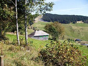 Martin Heidegger Hütte über Rütte, Todtnauberg...