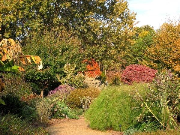 atlanta botanical garden - wikimedia