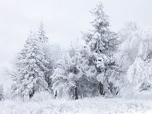 Snow scene at Shipka Pass