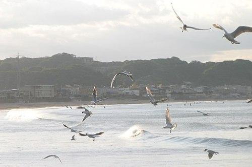Yuigahama beach - panoramio - Taka Nozaki