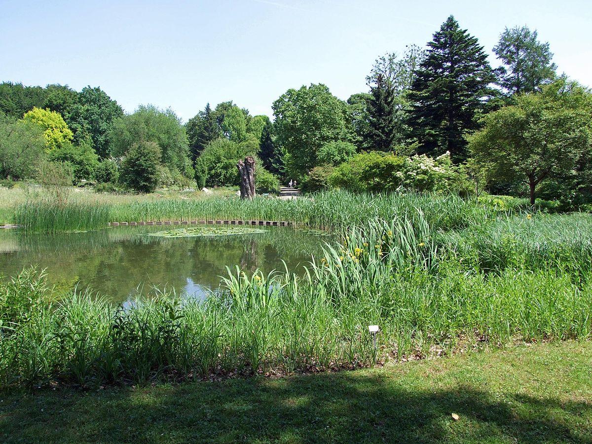 Botanical Garden Of Goethe University Frankfurt  Wikipedia