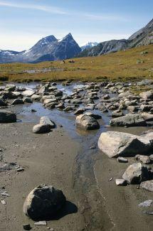 Fraser Pass - Wikipedia