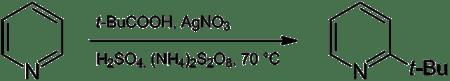 Reaction between pyridine and pivalic acid to 2-tert-butylpyridine
