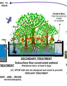 Process flow diagram for  typical treatment plant via subsurface constructed wetlands sfcw also sewage wikipedia rh enpedia
