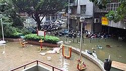 颱風天鴿對港澳地區之影響 - 維基百科,自由的百科全書