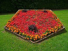 Flowerbed Wiktionary
