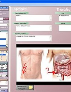 Sample view of an electronic health record also wikipedia rh enpedia