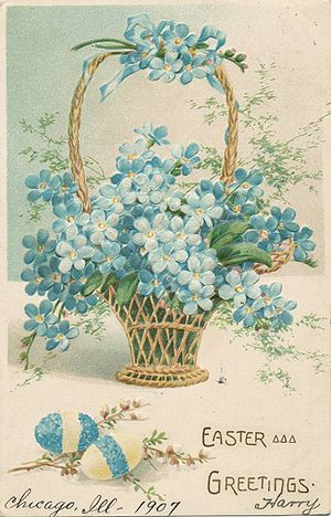 English: Forget-me-not postcard, circa 1907
