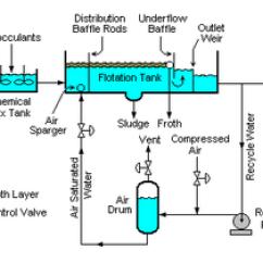 White Fat Cell Diagram Toyota Land Cruiser Wiring Ispessimento Dei Fanghi - Wikipedia