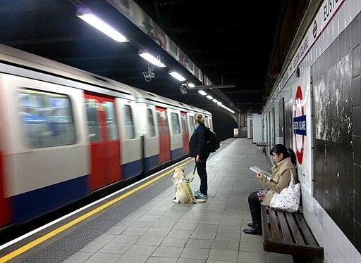 Guide dog user on the tube Euston Square 16 November 2012