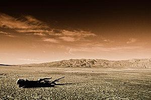 Mojave Desert, 2011