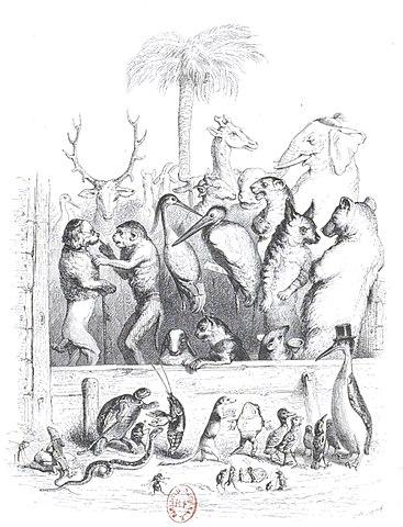 Fichier:Scènes de la vie privée et publique des animaux