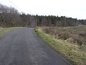 English: Knockmore Road Big Dog Forest is ahaed