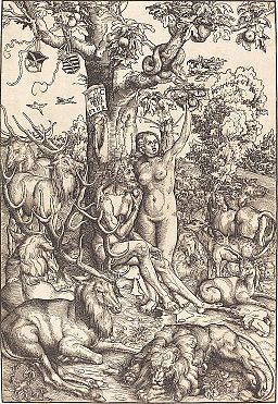 Lucas Cranach d.Ä. - Adam und Eva (National Gallery of Art)