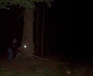 English: Night geocache. Only in darkness refl...