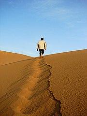 Desert leader