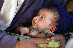 https://i0.wp.com/upload.wikimedia.org/wikipedia/commons/thumb/7/78/US_Navy_051014-N-8796S-046_A_Pakistani_child_sits_in_his_fathers_arms_aboard_a_U.S._Navy_MH-53E_Sea_Stallion_helicopter_while_his_mother_and_father_are_air_lifted_to_medical_treatment.jpg/256px-US_Navy_051014-N-8796S-046_A_Pakistani_child_sits_in_his_fathers_arms_aboard_a_U.S._Navy_MH-53E_Sea_Stallion_helicopter_while_his_mother_and_father_are_air_lifted_to_medical_treatment.jpg