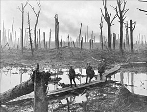 Australian gunners in Château Wood near Hooge, 29 October 1917.