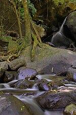 Gunung Wilis  Wikipedia bahasa Indonesia ensiklopedia bebas