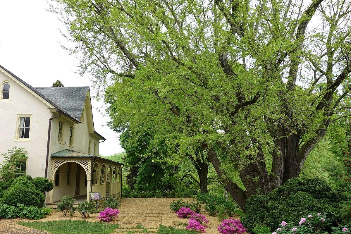 File Lachford Hall Tyler Arboretum Dsc01892 Jpg Wikimedia Commons