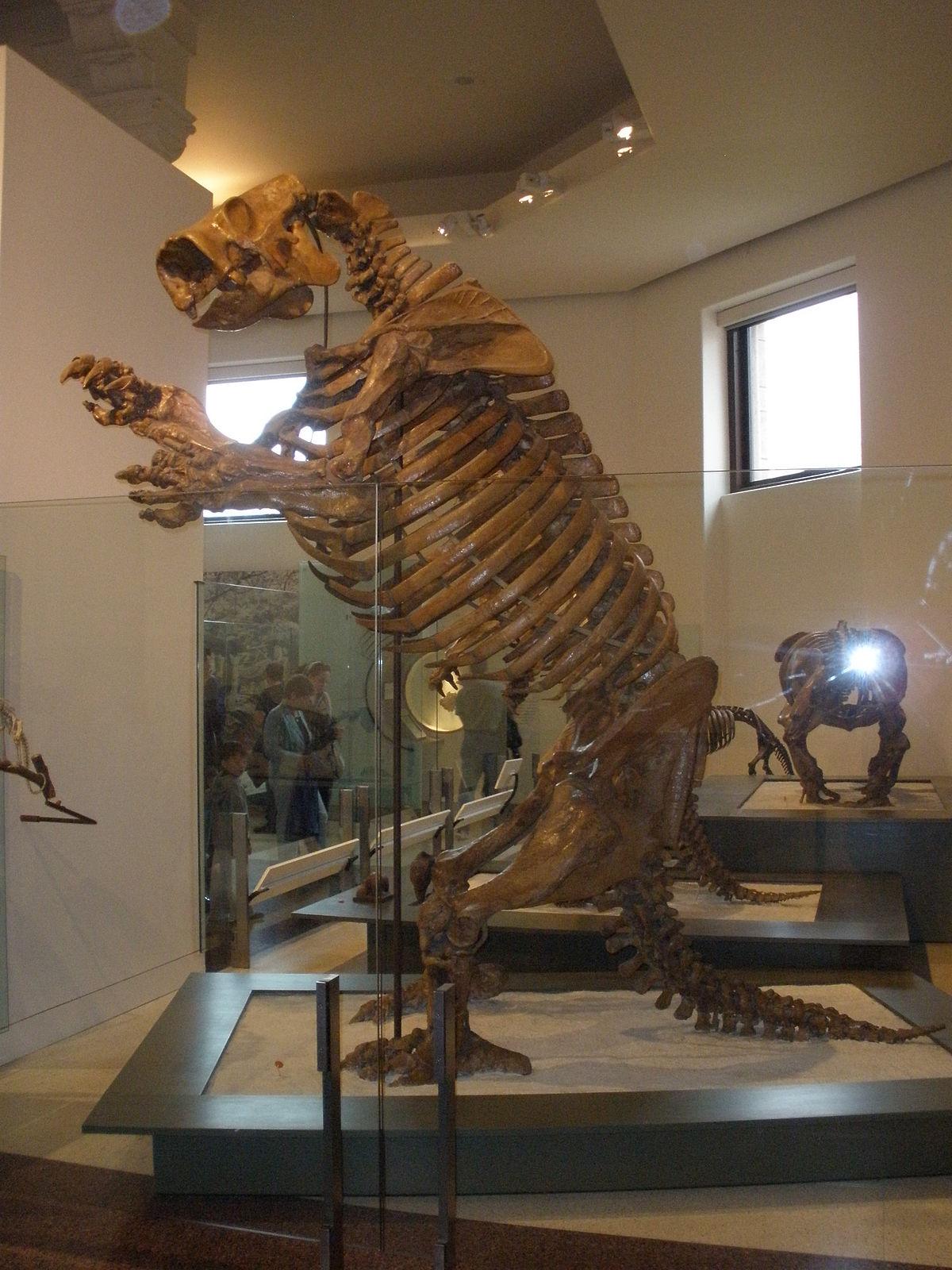 Lestodon