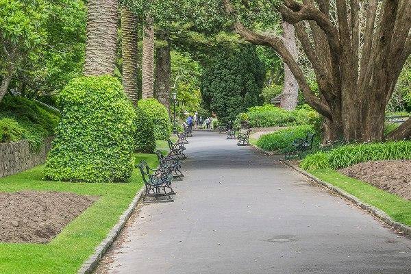 wellington botanic garden - wikipedia