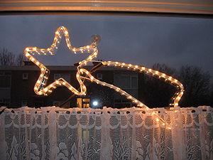 Christmas light decoration shaped like a shoot...