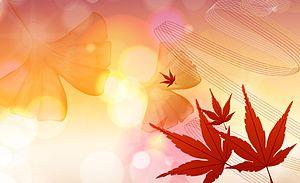 English: Autumn colors.