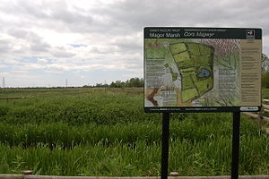 Magor Marsh Nature Reserve (Gwent Wildlife Trust)