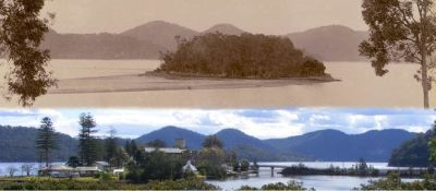 Peat Island - Wikipedia