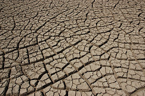 Earth in the Rann of Kutch cracking as it dries