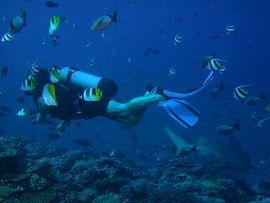 Scuba diver wearing a shorty