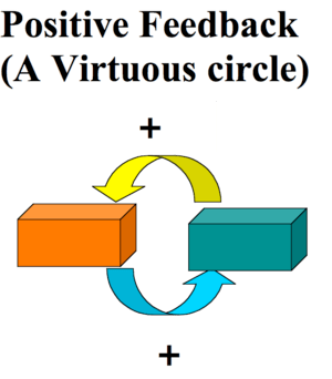 positive feedback virtuous circle