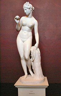 Um dos elementos principais na descrição do Ramalhete, é uma estátua de Vénus Citereia, identidade reconhecida por Monsenhor Buccarini, Núncio de Sua Santidade.