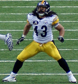 Pittsburgh Steelers safety Troy Polamalu in ac...