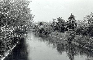 The canal in spring between Busto Garolfo and ...