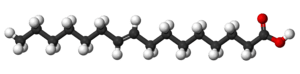 Ball-and-stick model of the palmitelaidic acid...