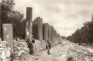 A street of Pillars at the ruins of the city S...