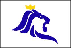 Vlag van Luxemburg stad  Wikipedia
