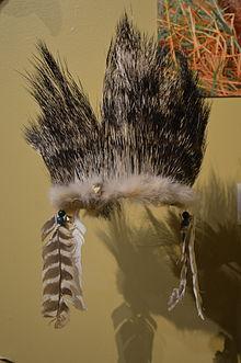 Porcupine Wikipedia
