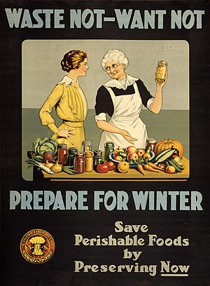 """World War I poster. """"Waste not, want not...."""