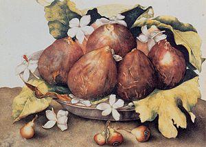 Giovanna Garzoni - Figs - WGA8492