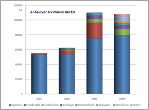 English: Cultivation of gm corn in the EU Deut...