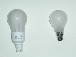 CFL-Incand-bulbs