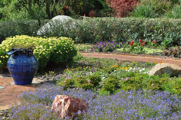 mounts botanical garden - wikipedia