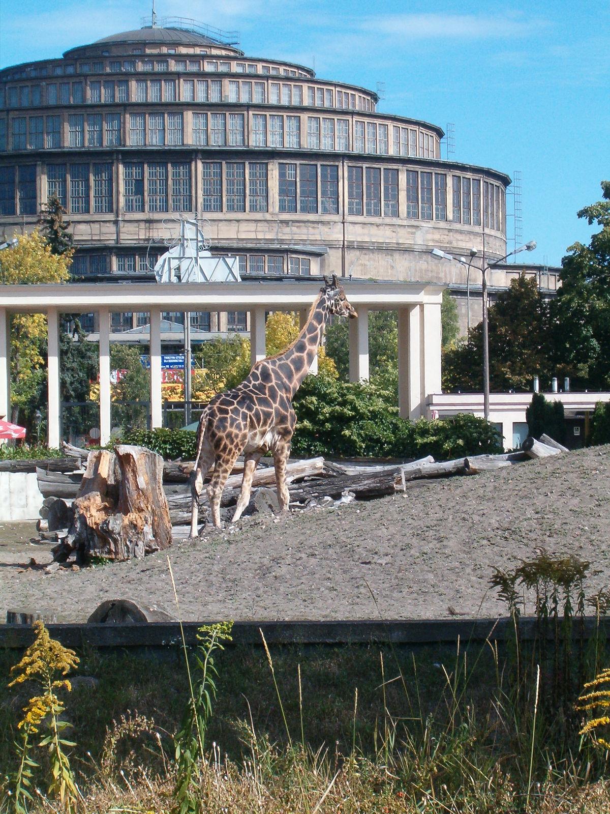 Zoologischer Garten Breslau  Wikipedia