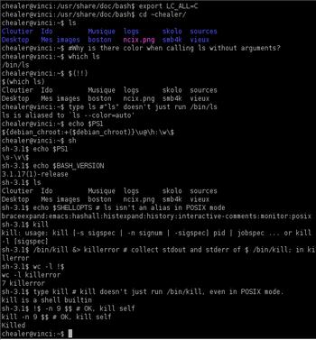 Screenshot of a Bash 3.1 session demonstrating...