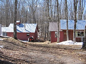 Maple syrup houses