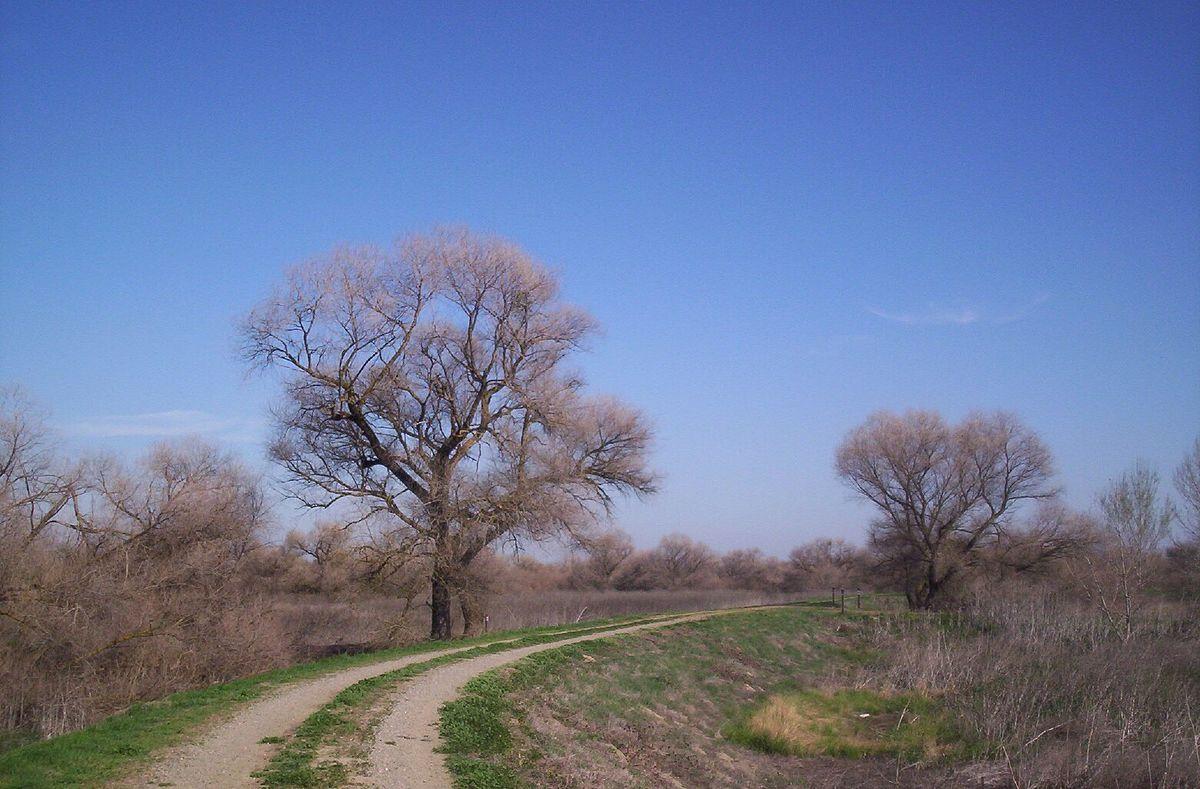 San Luis National Wildlife Refuge  Wikipedia