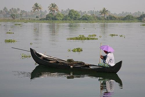 Kerala backwater 20080218-11